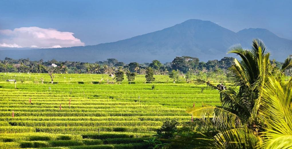 Villa Mana Canggu Bali Villas