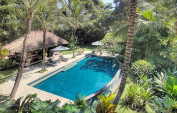 Villa Alamanda - Ubud Villas Bali ariel pool