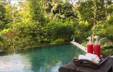 Ubud Bali Villas - Villa Umah Shanti