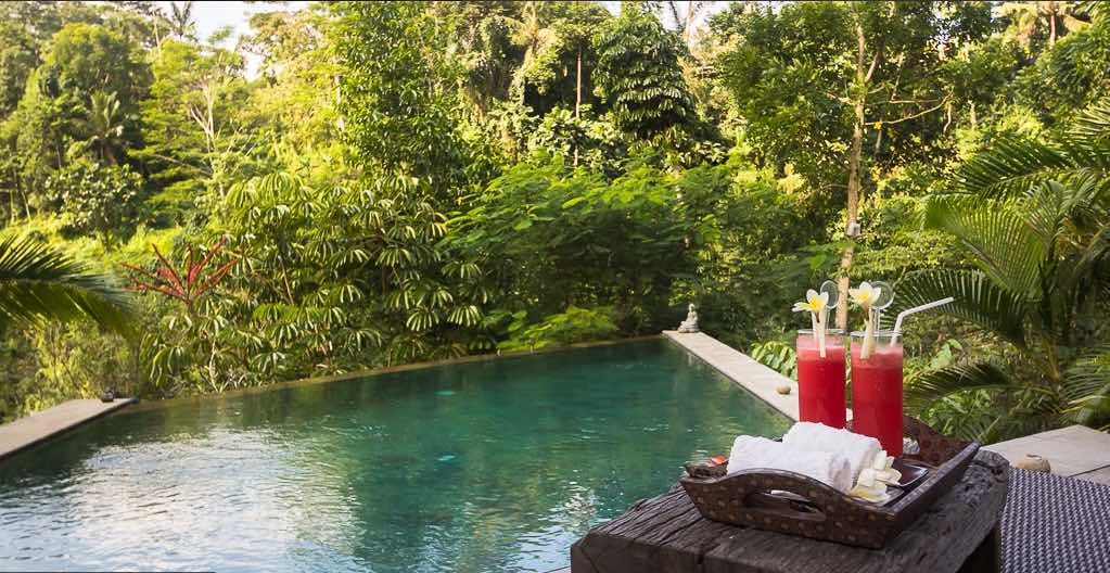 Ubud Bali Villas - Villa Umah Shanti pool view