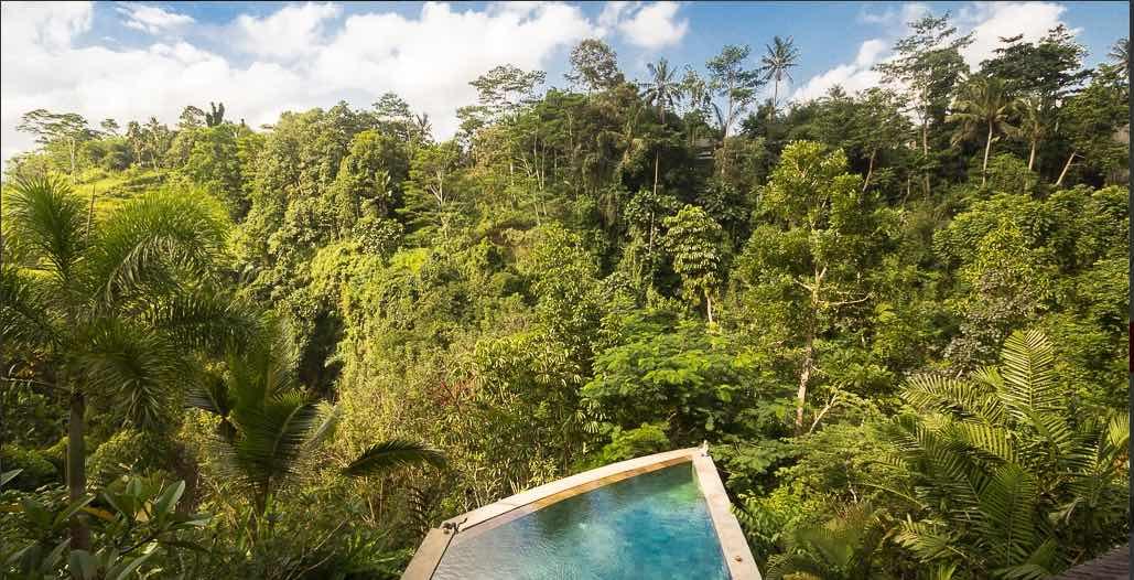 Bali Villas Ubud - Villa Umah Shanti ariel pool