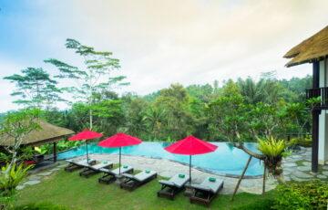 Ubud Villas - villa kembang