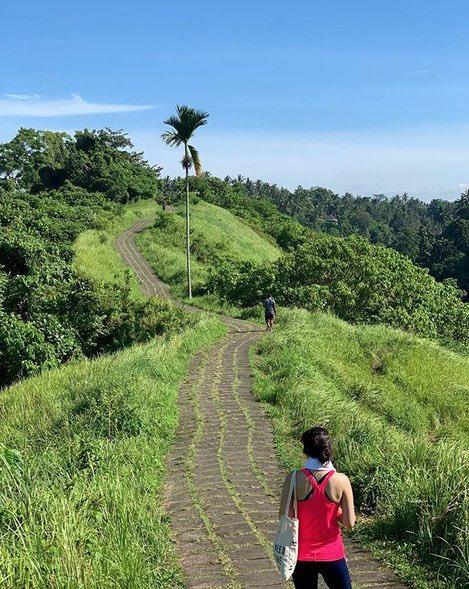 visit ubud in bali - Campuhan Ridge
