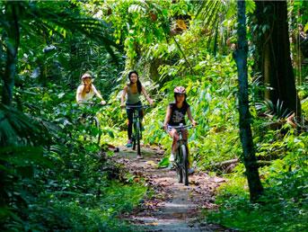 maountain cycling tours bali tours