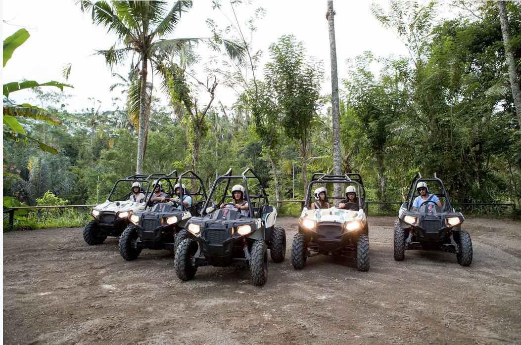 jungle buggy tours bali - bali tours
